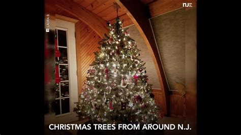 christmas trees from around new jersey youtube
