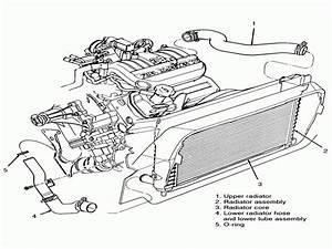 Ford Taurus Radiator Hoses Diagram