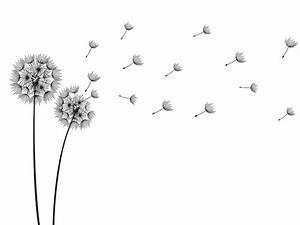 Pusteblume Schwarz Weiß Vögel : wandtattoo pusteblumen im wind ~ Orissabook.com Haus und Dekorationen
