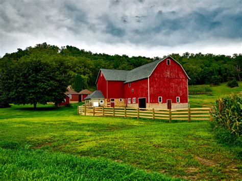 Why Are Barns Painted Red?
