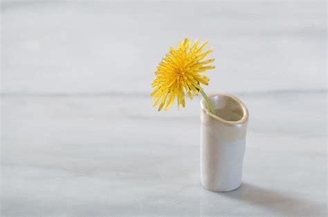dandelion vases     vase home diy  cut