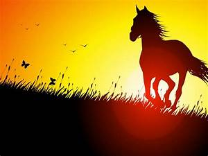 Horses with sunset | Pets Lovers