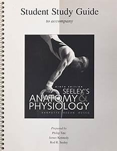 Seeleys Anatomy And Physiology Textbooks