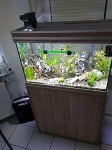Aquarium 120l Mit Unterschrank : top zustand kleinanzeigen aquaristik kaufen verkaufen bei deinetierwelt ~ Frokenaadalensverden.com Haus und Dekorationen