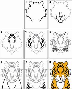 How To Draw a Tiger | Kid Scoop