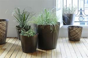 Pot Pour Plante : pot pour plante d int rieur photos de magnolisafleur ~ Teatrodelosmanantiales.com Idées de Décoration