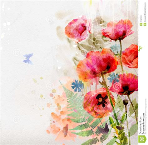 floral background  watercolor poppies stock images