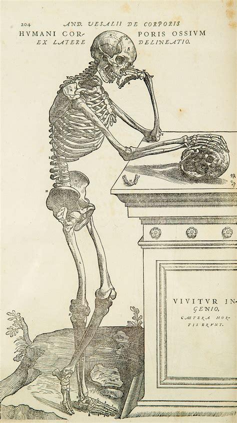 anatomia humana wikipedia la enciclopedia libre