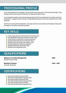 professional profile template doc c45ualwork999org With cv template doc
