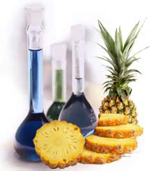 pineapple food processing technologyquality pineapple