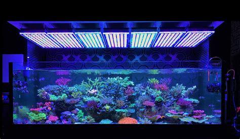 atlantik v4 reef aquarium led lighting orphek aquarium