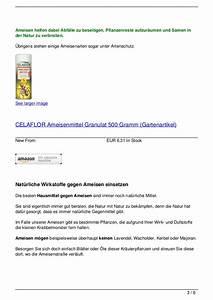 Mittel Gegen Ameisen : nat rliche hausmittel gegen ameisen ~ Frokenaadalensverden.com Haus und Dekorationen