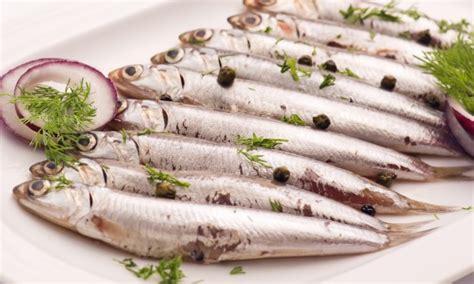 cuisiner un poisson comme un poisson dans l 39 eau 7 recettes pour cuisiner les