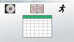 Flat File Database  Definition  U0026 Example