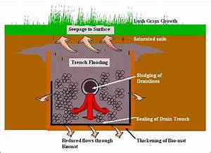 System Troubleshooting  Septic System Troubleshooting