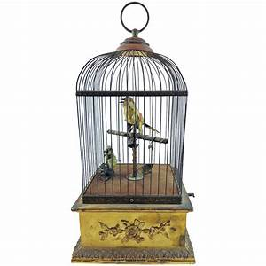 Vintage Birdcage Pictures to Pin on Pinterest - PinsDaddy