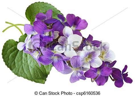 blue violet clipart clipground