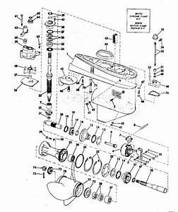 Mercury 15 Hp Trigger Diagram