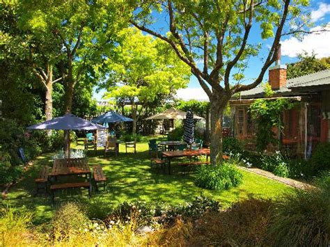 south garden restaurant s garden cafe blenheim restaurant reviews phone
