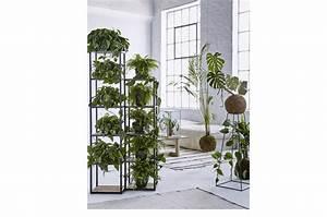 Scaffali e pannelli: nuovi spazi per le piante in casa CASAfacile