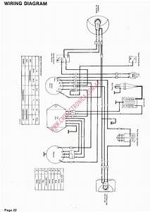 1996 Yamaha 250 Timberwolf Wiring Diagram