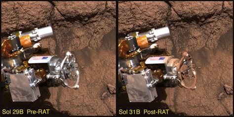 Rat On Mars