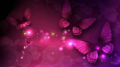 Butterfly Pink Butterflies Wallpapers Lights Neon Dark