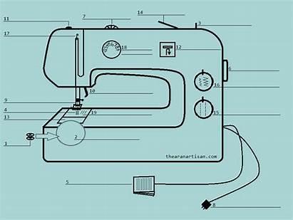 Sewing Machine Parts Worksheet Worksheets Beginner Tools