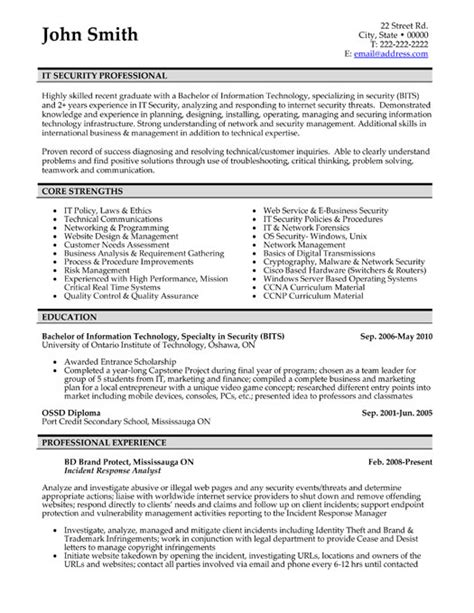 Business Resume Template Professional Resume Templates Cv Template Resume Exles