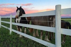 Your Source For Horse Fencing In Canada