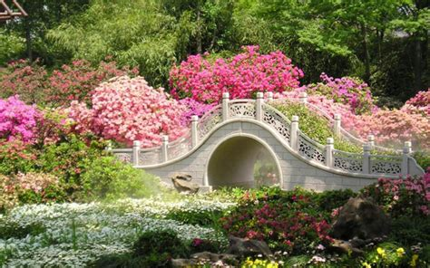 Summer Garden Wallpaper 25 Decor Ideas Enhancedhomesorg