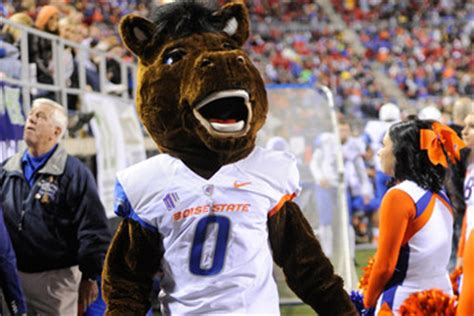 buster bronco pictures  images zimbio