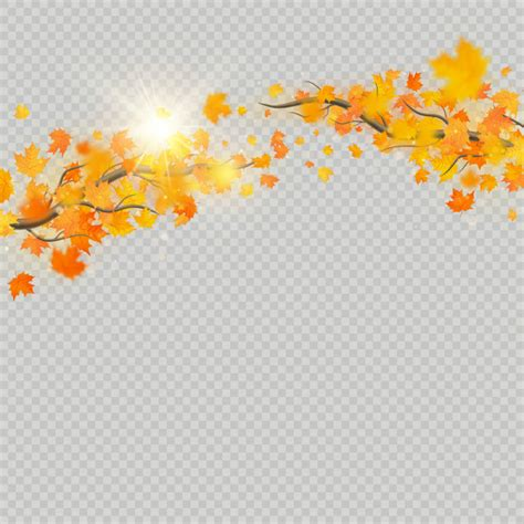 Fall maple leaves with delicate sun for decoration autumn