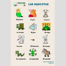 Domestic Animals And Pets In Spanish Listening Practice Spanishlearninglab