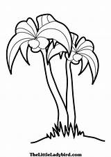 Palm Tree Colouring Coloring Pages Branches Palmetto Simple Drawing Beach Sabal Clipart Template Clipartbest Trees Getdrawings Club Clip sketch template