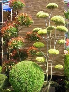 Deco Jardin Japonais : decoration jardin japonais ~ Premium-room.com Idées de Décoration