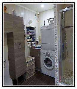 Machine A Laver Vaisselle : nettoyages machine laver et lave vaisselle 20 f vrier ~ Dailycaller-alerts.com Idées de Décoration