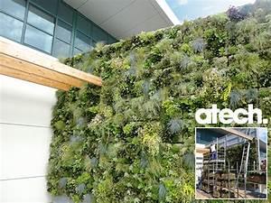Mur Vegetal Exterieur : murs vegetaux et treillages tous les fournisseurs mur ~ Melissatoandfro.com Idées de Décoration