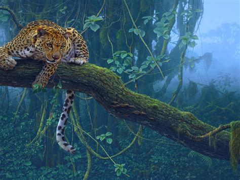 animals jungle leopard  branch hd wallpaper