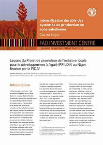 Niger Sustainable Intensification Of Crops Learning Note