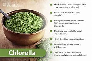Chlorella  7 Super Health Benefits For Brain And Body