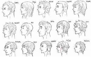 Human Nose Types
