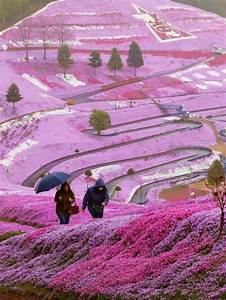 Best 25+ Beautiful places in japan ideas on Pinterest ...