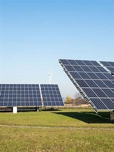 Durée De Vie D Un Moucheron : dur e de vie panneaux solaires ~ Farleysfitness.com Idées de Décoration