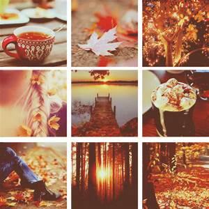 Tegan on Toast: Autumn: Awakening The Tumblr Girl In All Of Us