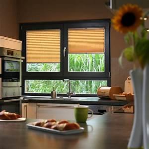 Sichtschutz Für Fenster : fenster sichtschutz ~ Sanjose-hotels-ca.com Haus und Dekorationen