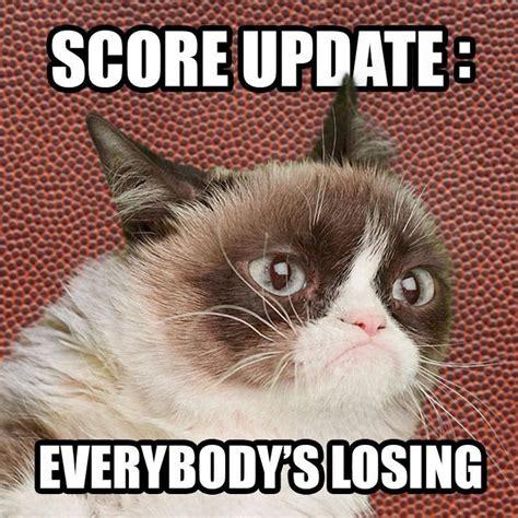 Grumpy Cat Coma Meme - 1082 best grumpy cat fans memes images on pinterest animal humor cat memes and dreams