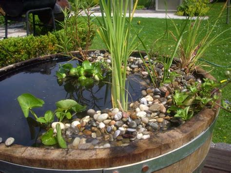 Miniteich Anlegen So Kommt Der Teich Auf Den Balkon by Mini Gartenteich Anlegen
