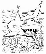 Shark Coloring Printable Pages sketch template