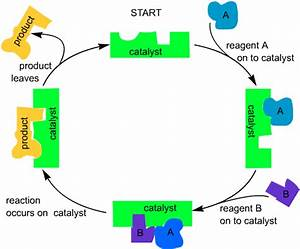 CIEC Catalysis -- Principles of Catalysis